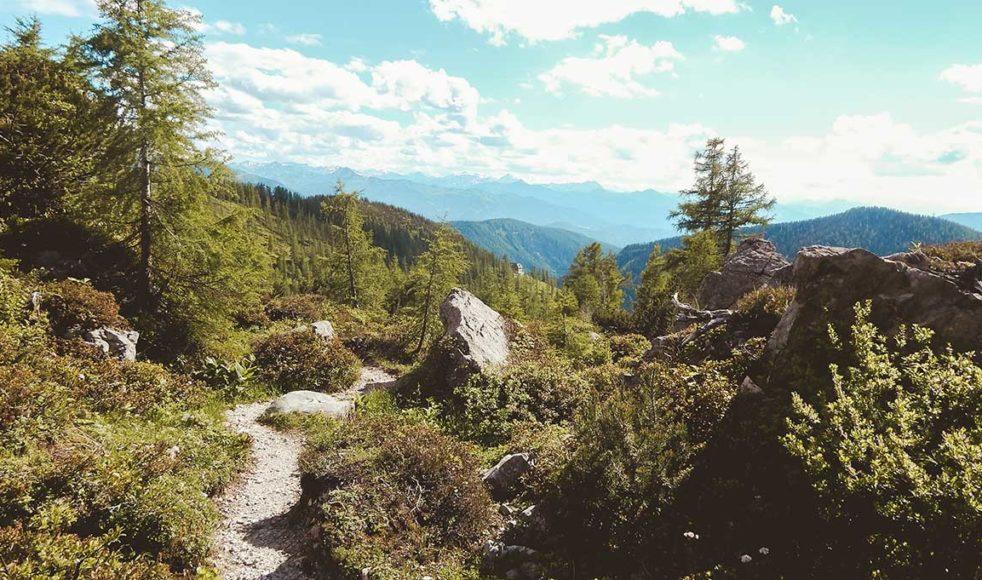 Den historiska bibelsmuggelleden över de österrikiska Alperna är cirka 50 mil och går från norr om Donau till södra Österrike.