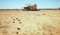 Bildreportage: Skolmat i Somaliland
