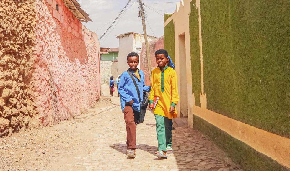 För många barn i Etiopien är skolmaten det enda riktiga målet mat per dag. Men nu får de ingen skolmat, eftersom skolan håller stängt på grund av coronakrisen.