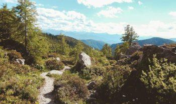 Från Bibelsmuggling till pilgrimsvandring
