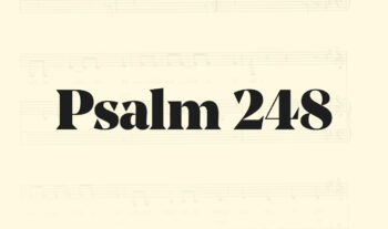 248: Tryggare kan ingen vara